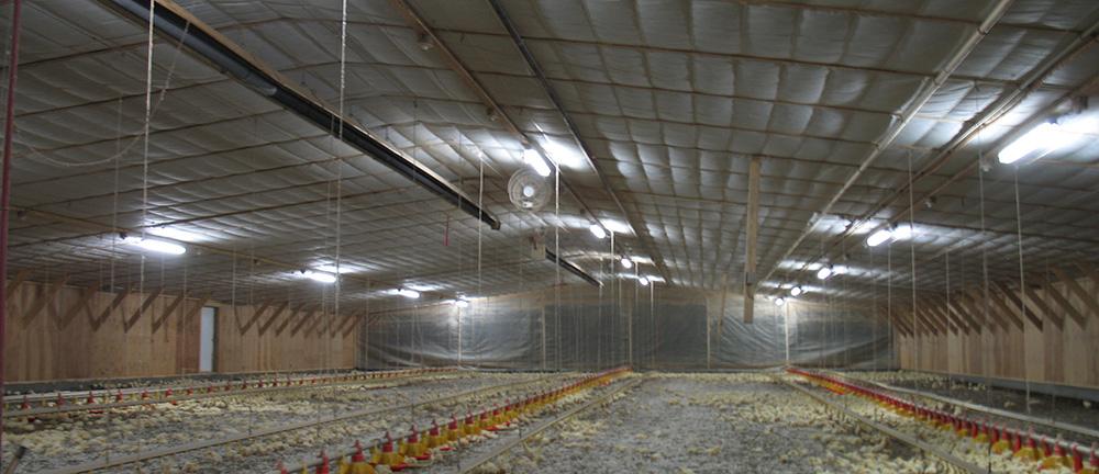 201clairage cbm produits d233clairages agricoles